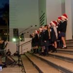 Hamilton Christmas Tree Lighting 2014 (23)