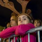 Hamilton Christmas Tree Lighting 2014 (36)