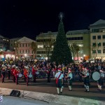Hamilton Christmas Tree Lighting 2014 (46)
