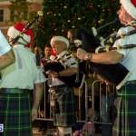 Hamilton Christmas Tree Lighting 2014 (55)