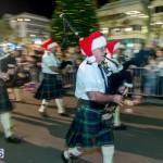 Hamilton Christmas Tree Lighting 2014 (61)