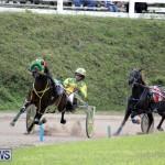 Harness Pony Racing Bermuda (13)