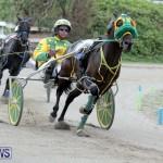 Harness Pony Racing Bermuda (19)