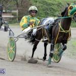 Harness Pony Racing Bermuda (20)