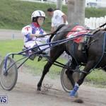 Harness Pony Racing Bermuda (21)