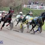 Harness Pony Racing Bermuda (6)