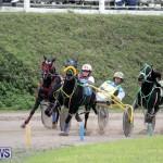 Harness Pony Racing Bermuda (8)