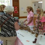 Home-Grown Alternatives Show Bermuda, November 22 2014-109