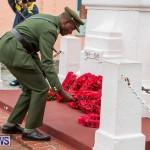 Remembrance Day Observed Bermuda, November 9 2014-33