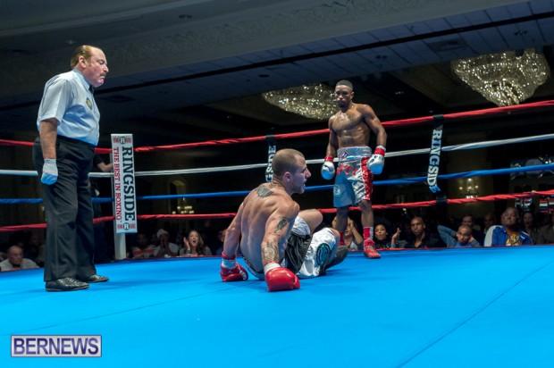 nikki bascome bermuda boxer nov 2014