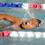 swimming Bermuda (1)