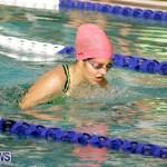 swimming Bermuda (12)