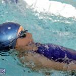 swimming Bermuda (18)