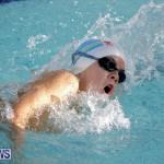 swimming Bermuda (7)