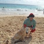Bermuda Christmas at Elbow Beach 2014 (22)