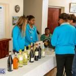 Brownies Girl Guides Fair Bermuda, December 6 2014-5