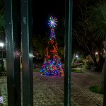 Christmas 2014 Bermuda set 2 (2)