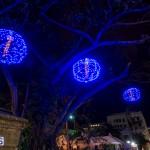 Christmas 2014 Bermuda set 2 (4)