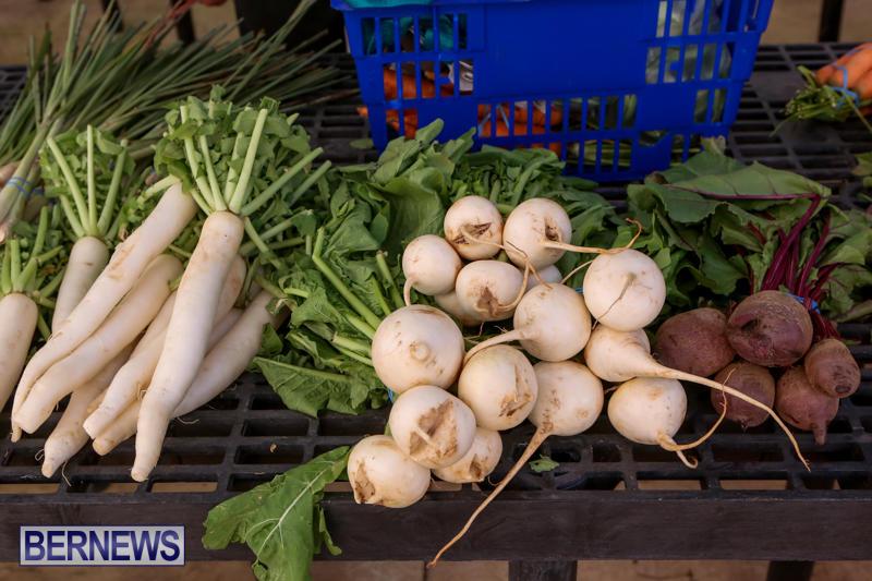 Farmers-Market-Bermuda-December-6-2014-2