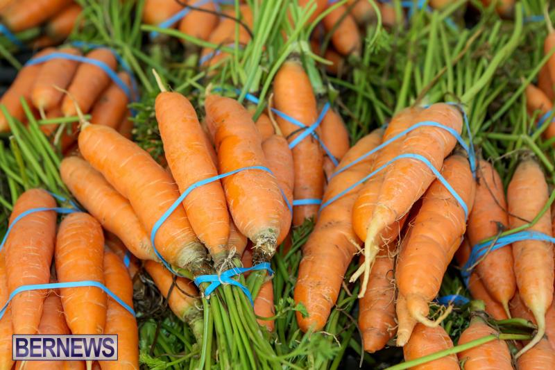 Farmers-Market-Bermuda-December-6-2014-3