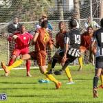 Friendship Semi Final Dandy Town PHC Bermuda, December 27 2014-84