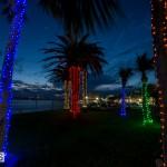 Hamilton Christmas lights 2014 (5)