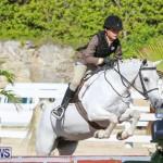Horse Show Bermuda, December 13 2014-1