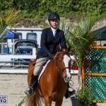Horse Show Bermuda, December 13 2014-12