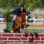 Horse Show Bermuda, December 13 2014-13