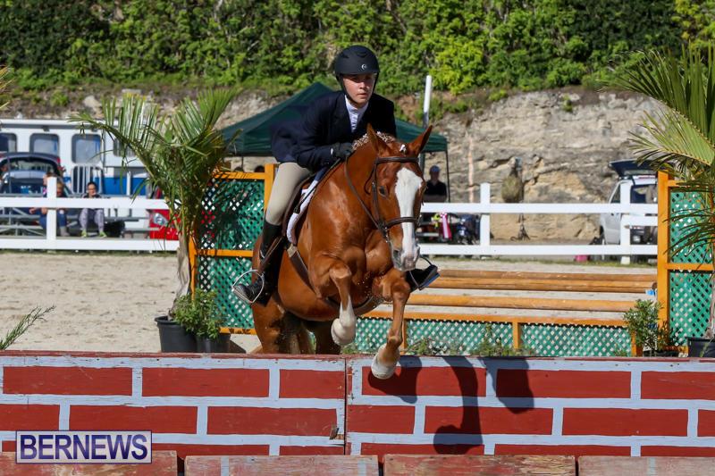Horse-Show-Bermuda-December-13-2014-13