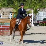 Horse Show Bermuda, December 13 2014-14
