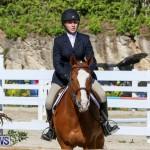 Horse Show Bermuda, December 13 2014-16