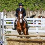 Horse Show Bermuda, December 13 2014-17
