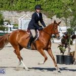 Horse Show Bermuda, December 13 2014-19