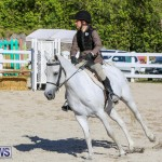Horse Show Bermuda, December 13 2014-2