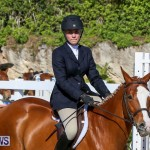 Horse Show Bermuda, December 13 2014-20