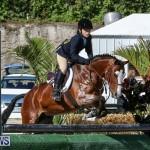 Horse Show Bermuda, December 13 2014-21