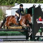 Horse Show Bermuda, December 13 2014-22