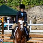 Horse Show Bermuda, December 13 2014-23