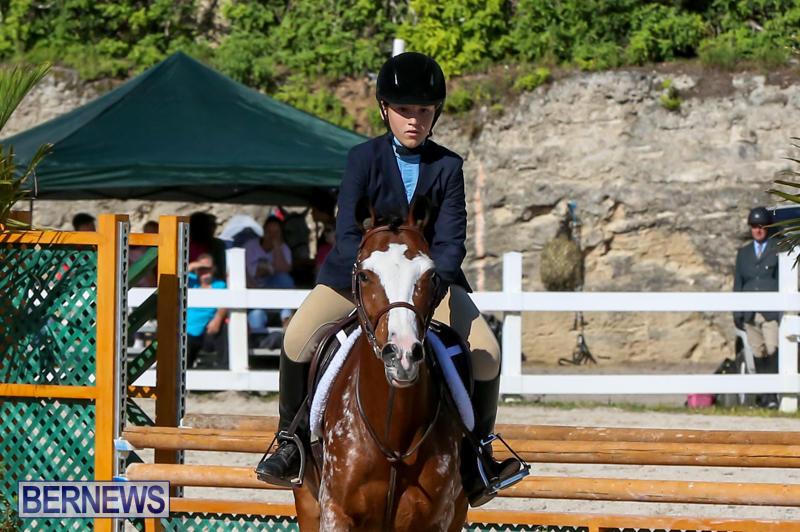 Horse-Show-Bermuda-December-13-2014-23