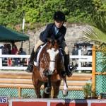 Horse Show Bermuda, December 13 2014-24