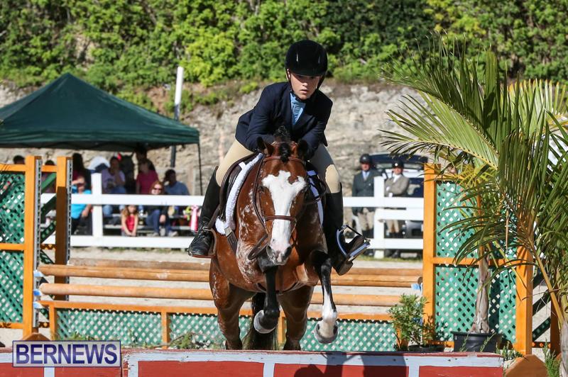 Horse-Show-Bermuda-December-13-2014-24