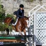 Horse Show Bermuda, December 13 2014-25