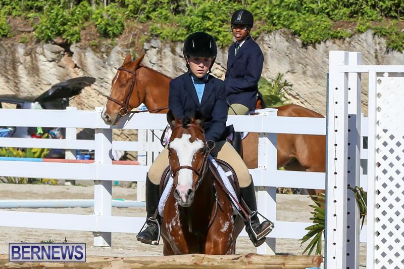 Horse-Show-Bermuda-December-13-2014-26