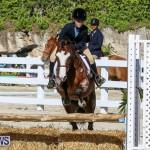 Horse Show Bermuda, December 13 2014-27