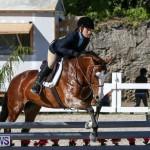 Horse Show Bermuda, December 13 2014-28