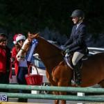 Horse Show Bermuda, December 13 2014-29