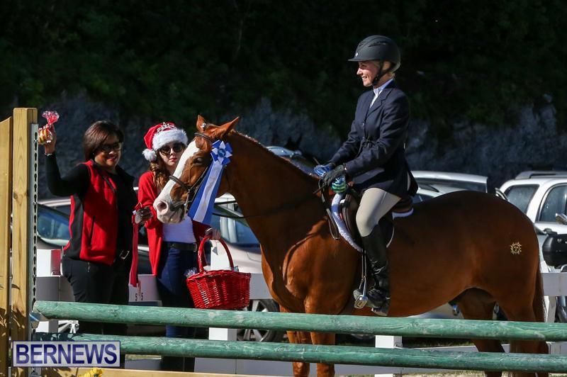 Horse-Show-Bermuda-December-13-2014-29
