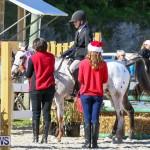 Horse Show Bermuda, December 13 2014-30