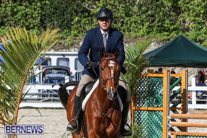 Horse-Show-Bermuda-December-13-2014-31